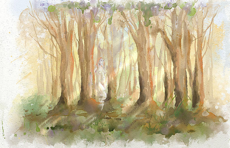 Click image for larger version.  Name:bosque.jpg Views:106 Size:474.5 KB ID:97079