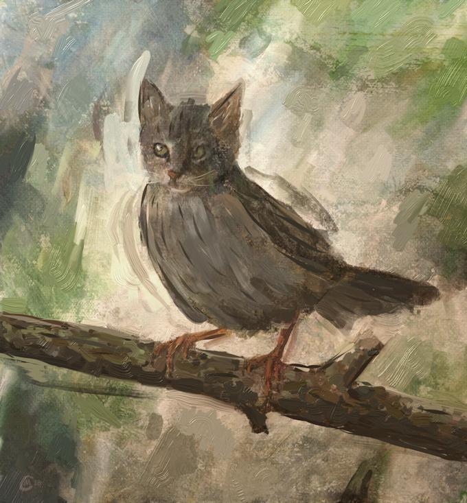 Name:  catbirdthingsmall.jpeg Views: 117 Size:  244.3 KB