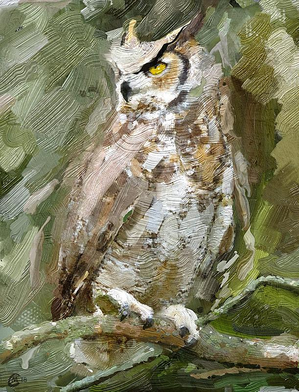 Click image for larger version.  Name:owl10.jpg Views:25 Size:269.6 KB ID:95631