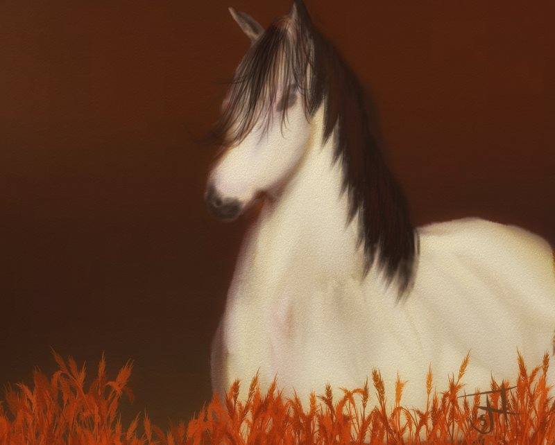 Name:  Golden Horse-th.jpg