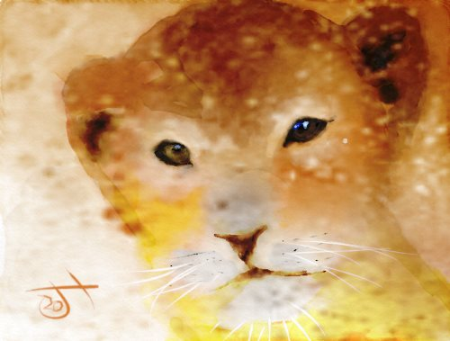 Name:  Lion cub.jpg Views: 58 Size:  29.8 KB