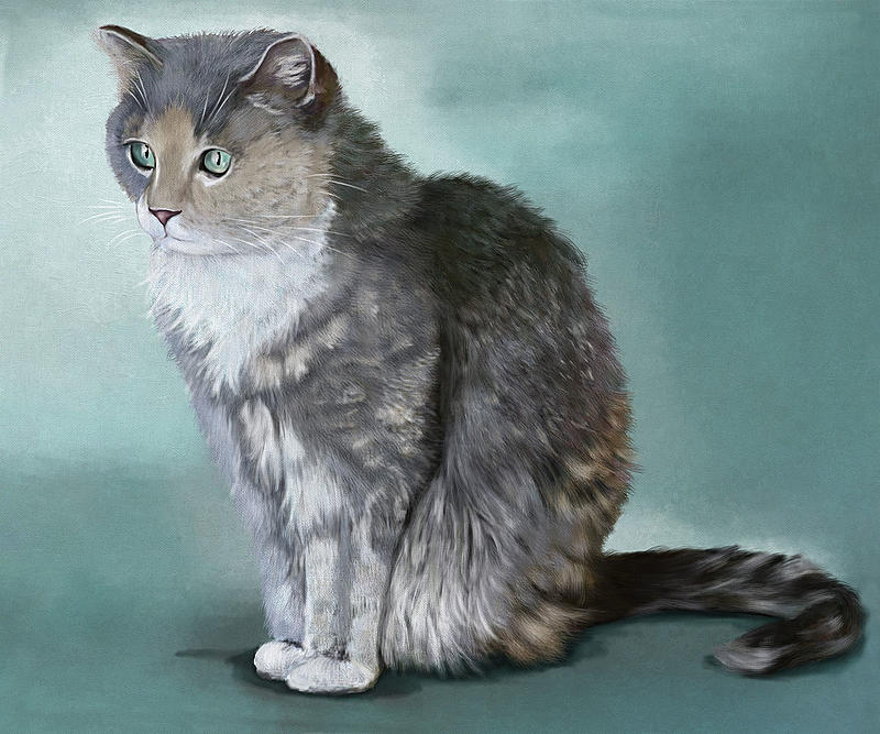 Click image for larger version.  Name:Cat Finished AR.jpg Views:36 Size:349.0 KB ID:100750