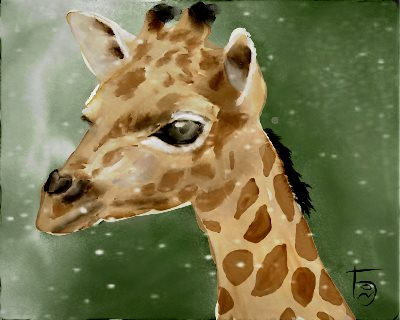Name:  GiraffeAR.jpg