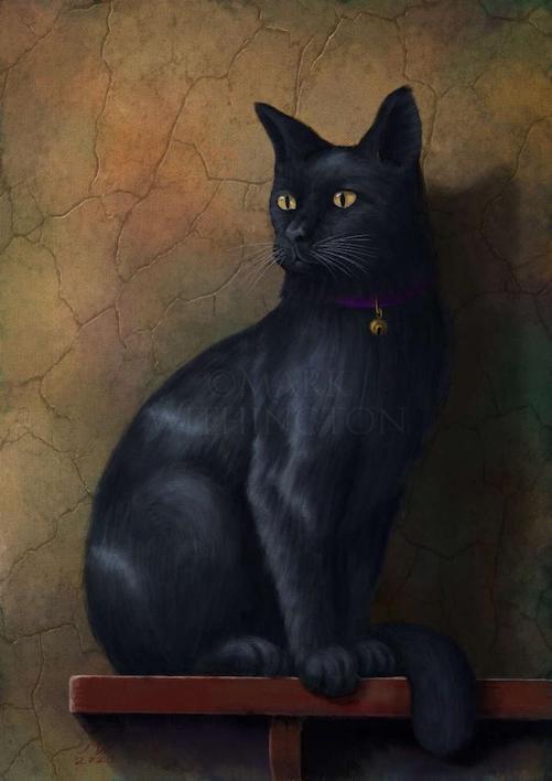Name:  Black Cat.jpg Views: 51 Size:  34.7 KB