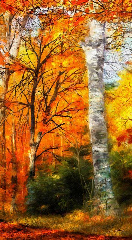 Name:  Autumn Glory II-StratoArt.jpg