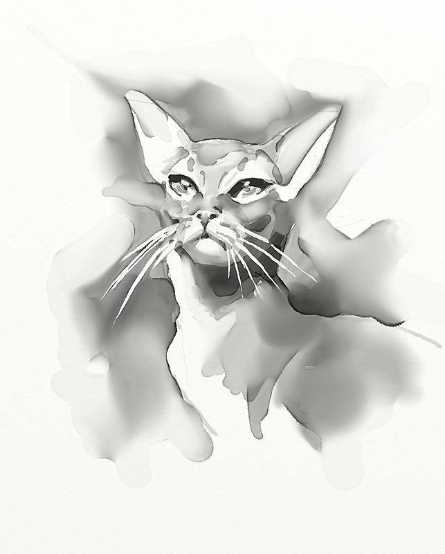 Click image for larger version.  Name:Kitty.jpg Views:41 Size:143.9 KB ID:97551