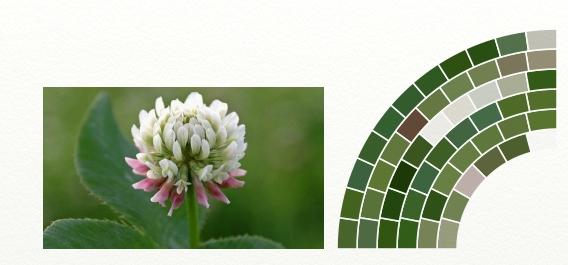 Name:  color picker.jpg Views: 161 Size:  103.6 KB