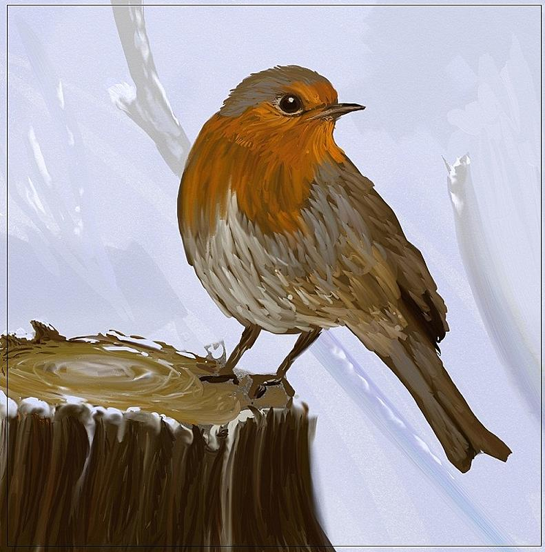 Click image for larger version.  Name:Robin1.jpg Views:112 Size:181.9 KB ID:90061